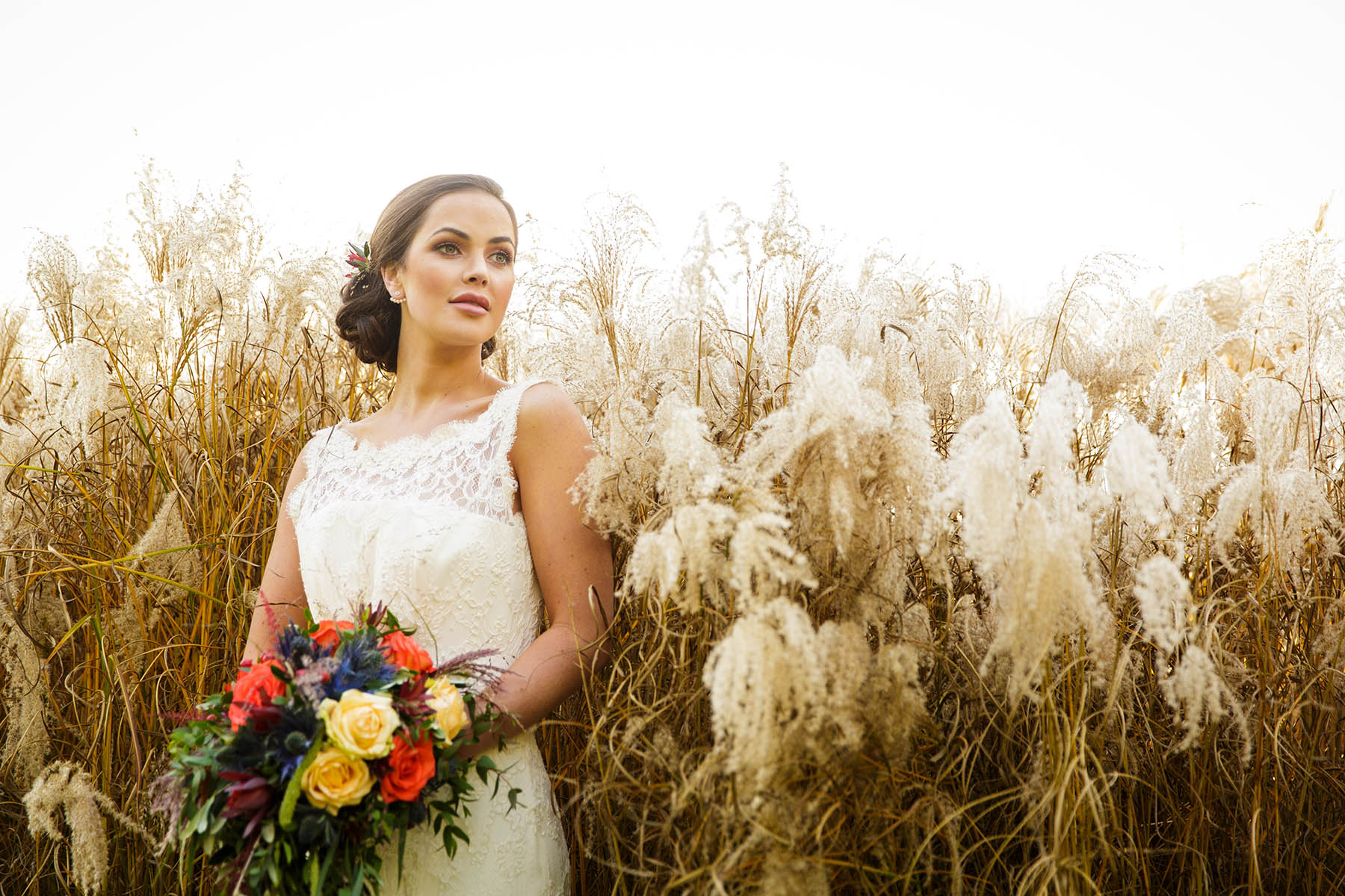 portrait of bride near pampas grass